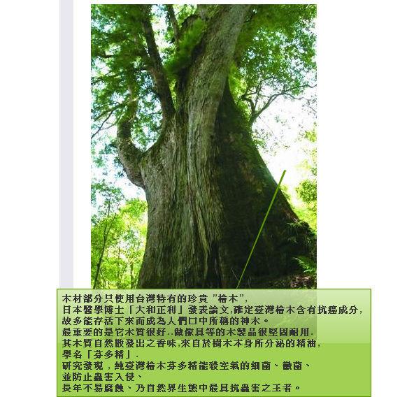 檜木精油功效01.jpg