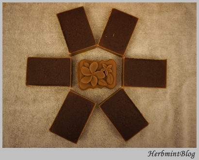 DSC00416巧克力皂.JPG