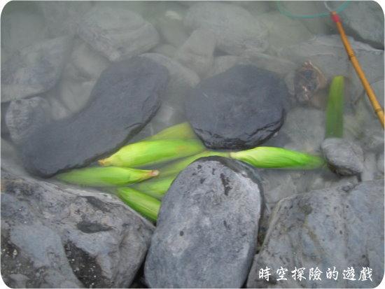 清水地熱中的玉米
