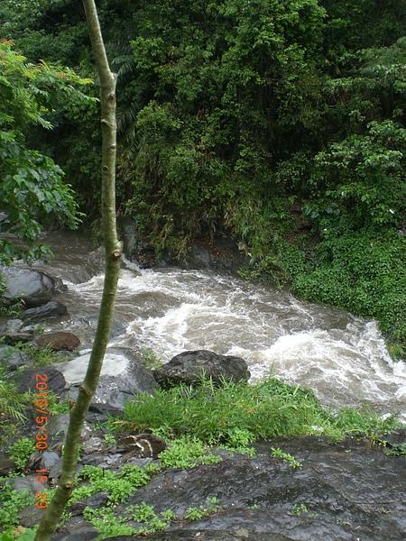 大南溪河水很急