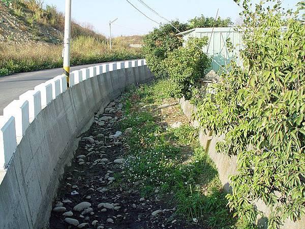 17橋4上游.JPG