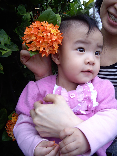 小蘋果與花朵