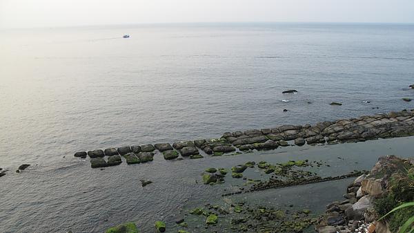 0980515 野柳風景區  一日遊 (229).JPG