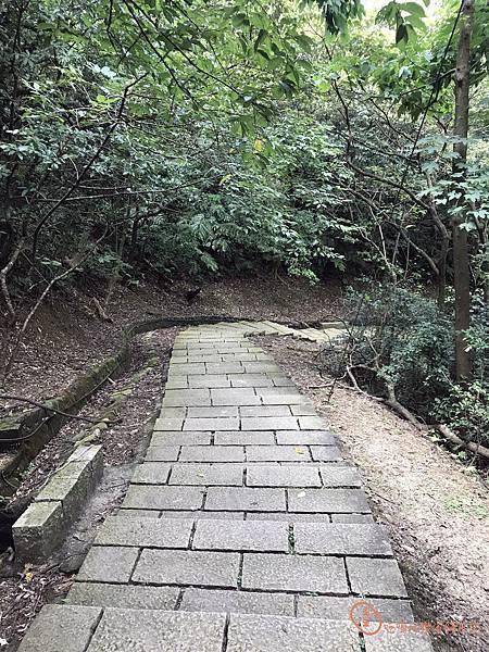 新山夢湖2.jpg
