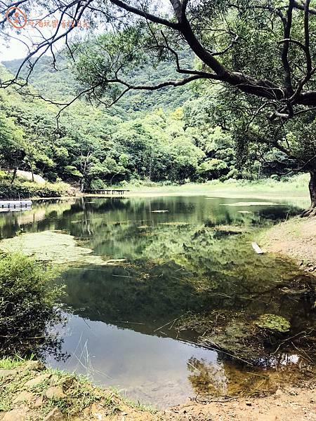 新山夢湖6.jpg