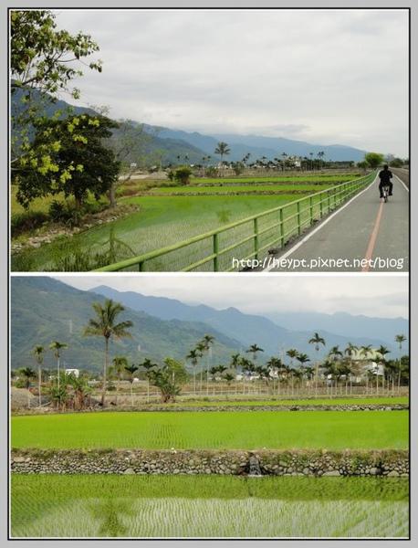 關山8.jpg