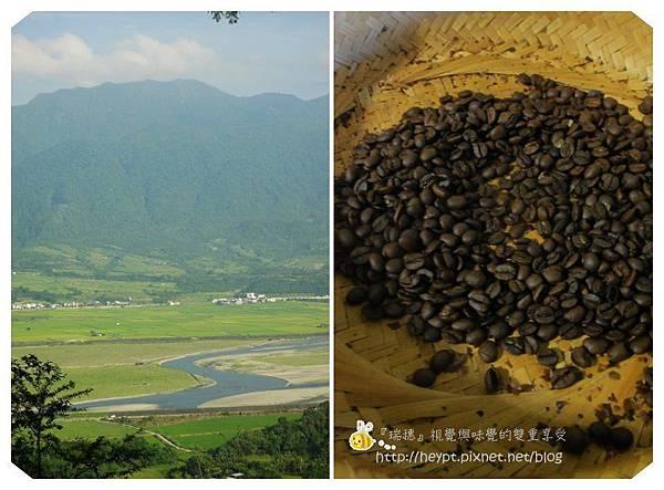 瑞穗。縱谷。咖啡香25.jpg