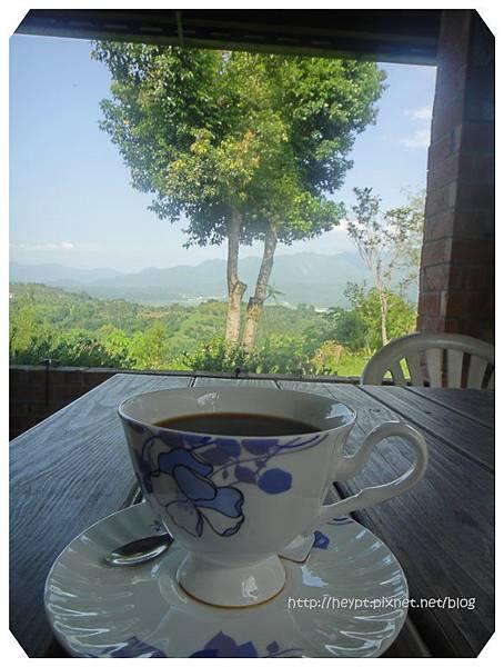 瑞穗。縱谷。咖啡香16.jpg