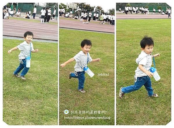 蕾蕾幼稚園運動會8.jpg