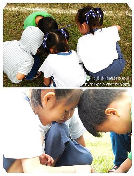 蕾蕾幼稚園運動會17.jpg