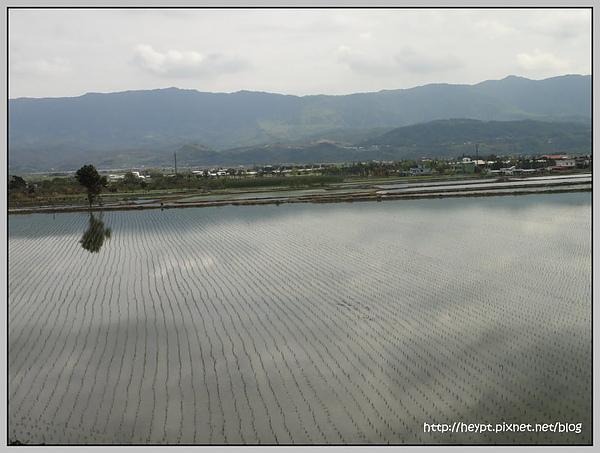關山15.jpg