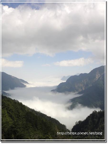 中橫觀霧21.jpg