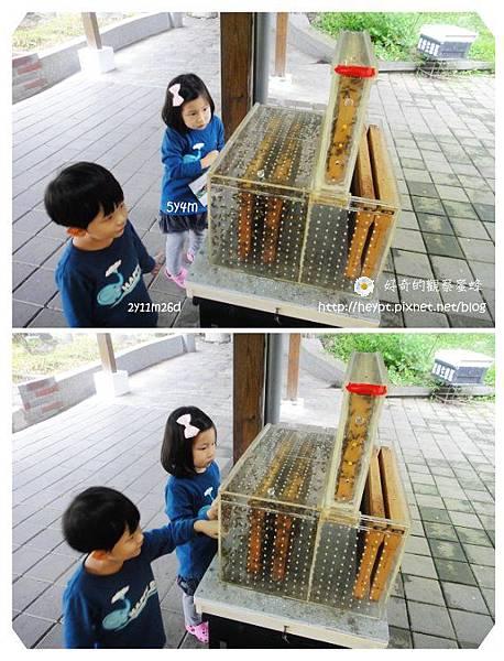 雨天遊記2.jpg
