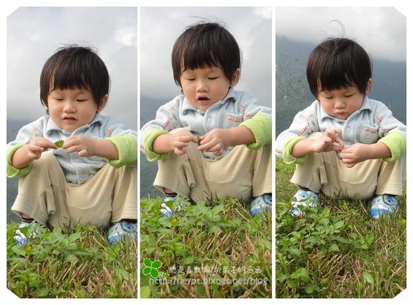 蕾蕾5歲生日4.jpg