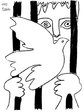 picasso prisoner of conscience