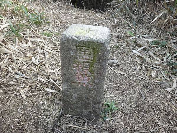 DSC00604.JPG