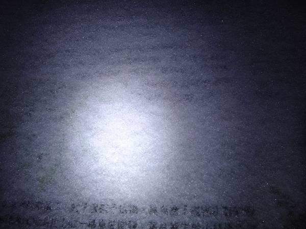 DSC02944.JPG