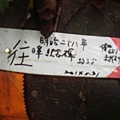 DSC09156.JPG