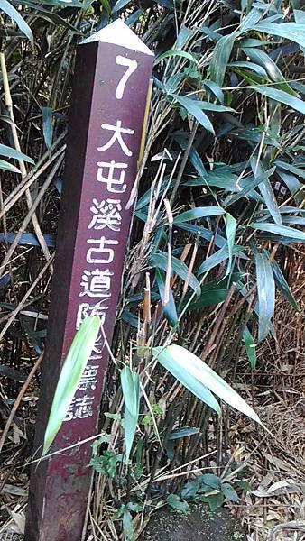 P_20150221_100757.jpg