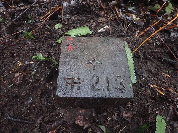 P1310158.JPG