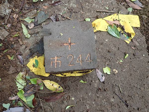 P7090188.JPG