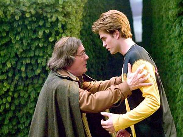 Cedric-and-Amos-Diggory-hufflepuff-28197434-500-333