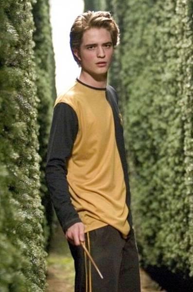 Cedric-Diggory-hufflepuff-28197503-330-500