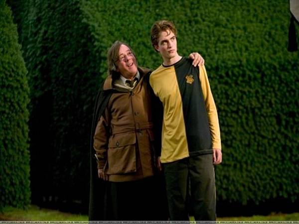 Cedric-and-Amos-Diggory-hufflepuff-28197438-500-332