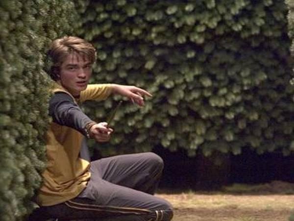 Cedric-Diggory-hufflepuff-28197527-428-286