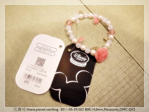 20110527 Disney
