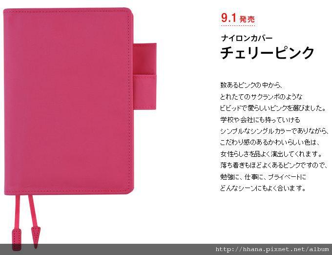 2011 HOBO Cherry Pink