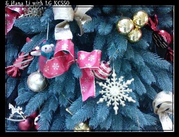 20081218 Christmas Tree