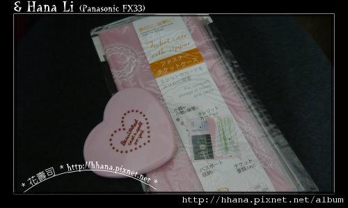 20100108 DAISO