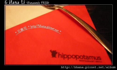 20100416 HIPPOPOTAMUS