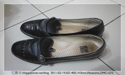20110219 鞋袋