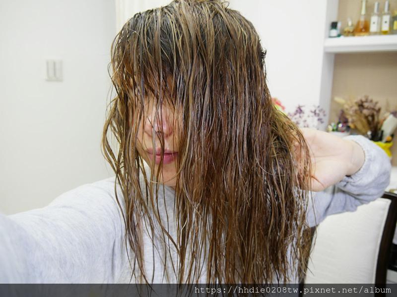 麗仕洗護髮 (19).jpg