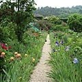 800px-Monet's_Garden_at_Giverny.jpg