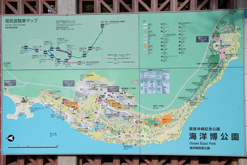 沖繩-436.jpg