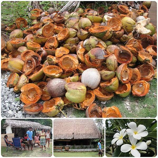 0603-9-可以常看到一堆的椰子殼.jpg