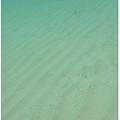 0608-39-水底下的沙子因為海浪變的一波一波.jpg