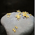 0630-19-好細緻的螃蟹.jpg
