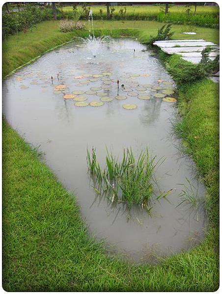 0716-8-台灣圖形的水池.jpg