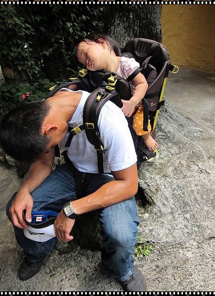 0814-25-抵達瀑布卻一直睡的綠豆.JPG