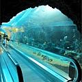 0826-18-有手扶梯的海底隧道.jpg