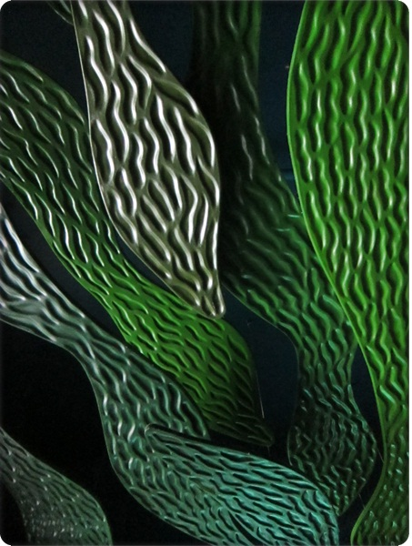 0826-43-天花板的海藻景色.jpg