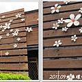 0902-42-通霄站外的漂亮油桐花.jpg
