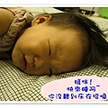 TOMER-24-床單的花紋.jpg