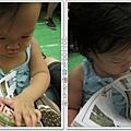 0903-28-研究路線的小綠豆.jpg