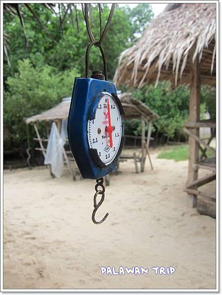 1104-28-用來秤魚的重量.jpg