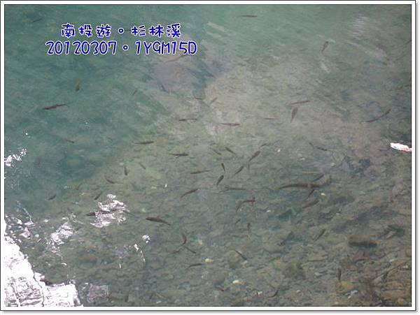 20120307-25-松瀧岩